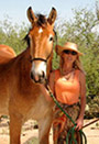 photo of Karen Pomroy with horse